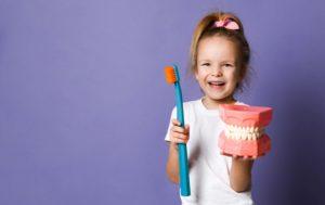 Kind mit Zahnmodell und Zahnbürste